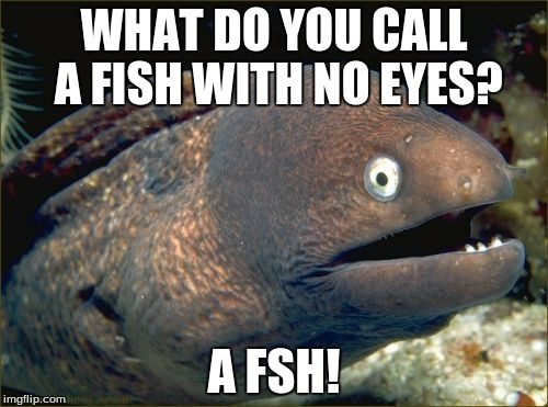 Bad Joke Eel Meme |  WHAT DO YOU CALL A FISH WITH NO EYES? A FSH! | image tagged in memes,bad joke eel | made w/ Imgflip meme maker