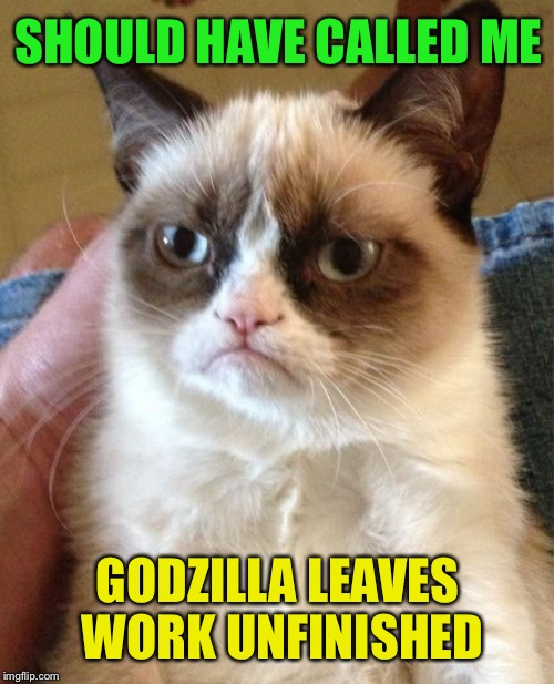 Grumpy Cat Meme | SHOULD HAVE CALLED ME GODZILLA LEAVES WORK UNFINISHED | image tagged in memes,grumpy cat | made w/ Imgflip meme maker