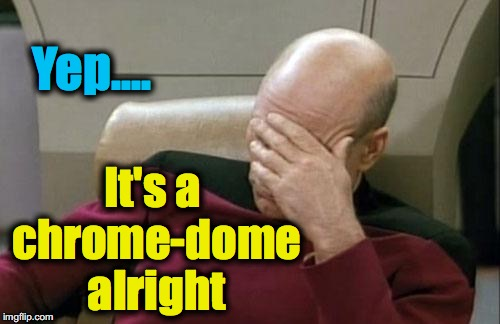 Captain Picard Facepalm Meme | Yep.... It's a chrome-dome alright | image tagged in memes,captain picard facepalm | made w/ Imgflip meme maker