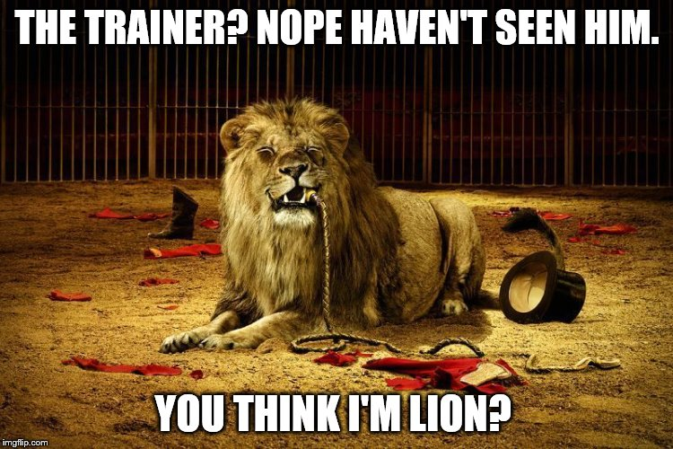 Rawr | THE TRAINER? NOPE HAVEN'T SEEN HIM. YOU THINK I'M LION? | image tagged in memes,animals,lions,flossing | made w/ Imgflip meme maker