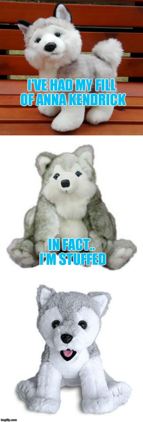 And now a word from Bad Pun Dog's stuffed buddy... | I'VE HAD MY FILL OF ANNA KENDRICK IN FACT.. I'M STUFFED | image tagged in bad pun dog,stuffed animal | made w/ Imgflip meme maker