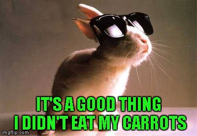 IT'S A GOOD THING I DIDN'T EAT MY CARROTS | made w/ Imgflip meme maker