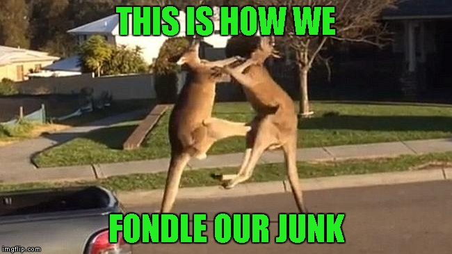 THIS IS HOW WE FONDLE OUR JUNK | made w/ Imgflip meme maker