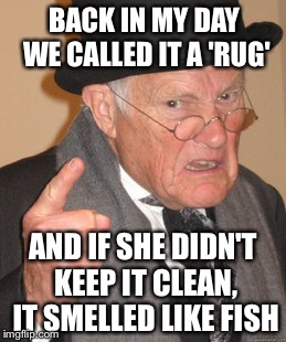 Back In My Day Meme | BACK IN MY DAY WE CALLED IT A 'RUG' AND IF SHE DIDN'T KEEP IT CLEAN, IT SMELLED LIKE FISH | image tagged in memes,back in my day | made w/ Imgflip meme maker