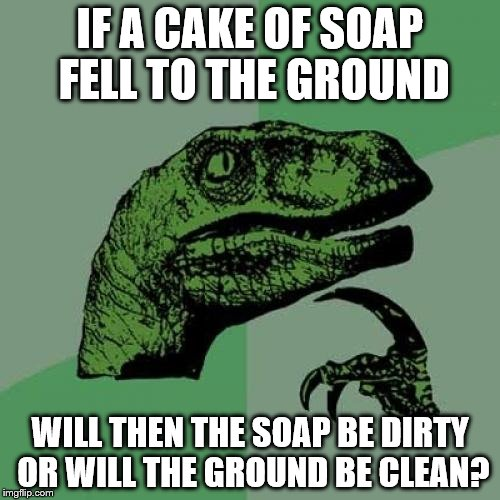 Philosoraptor Meme | IF A CAKE OF SOAP FELL TO THE GROUND WILL THEN THE SOAP BE DIRTY OR WILL THE GROUND BE CLEAN? | image tagged in memes,philosoraptor | made w/ Imgflip meme maker