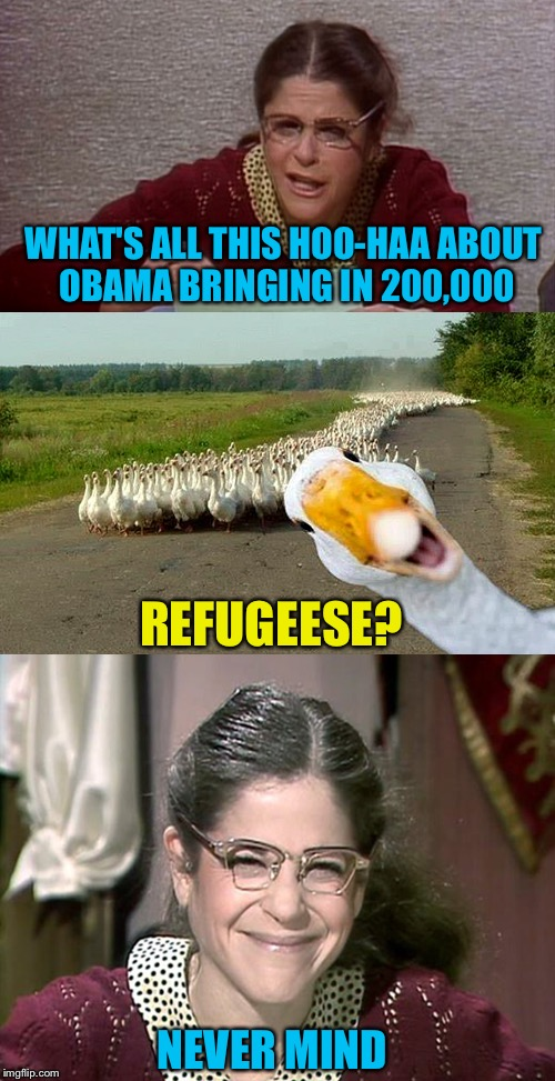 If Gilda Radner Was Alive Today... | WHAT'S ALL THIS HOO-HAA ABOUT OBAMA BRINGING IN 200,000 NEVER MIND REFUGEESE? | image tagged in refugees,obama,emily litella,never mind | made w/ Imgflip meme maker