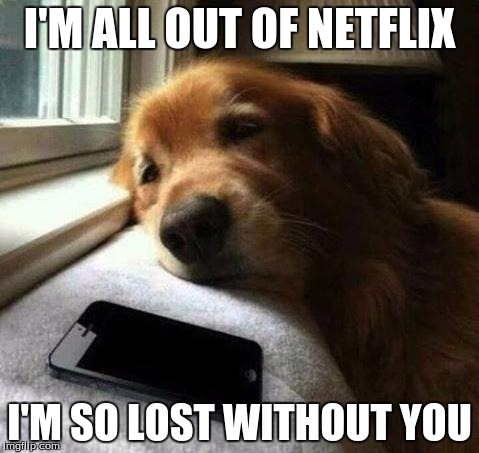 Lovesick | I'M ALL OUT OF NETFLIX I'M SO LOST WITHOUT YOU | image tagged in lovesick | made w/ Imgflip meme maker