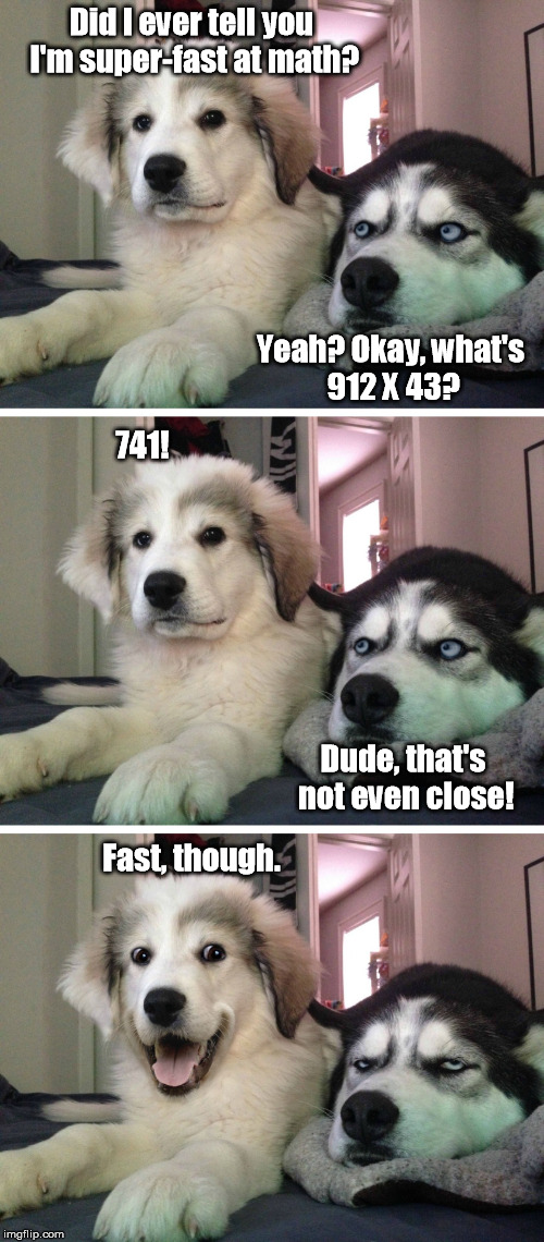 Something's Not Adding Up Here... |  Did I ever tell you I'm super-fast at math? Yeah? Okay, what's 912 X 43? 741! Dude, that's not even close! Fast, though. | image tagged in bad pun dogs,math,fast | made w/ Imgflip meme maker