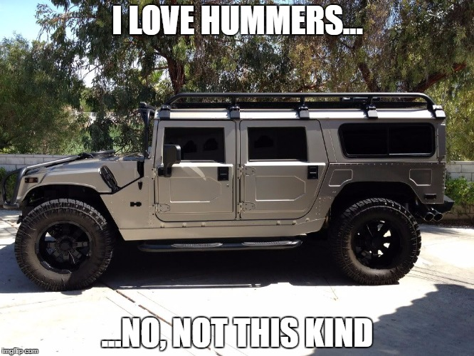 hummer | I LOVE HUMMERS... ...NO, NOT THIS KIND | image tagged in humor | made w/ Imgflip meme maker