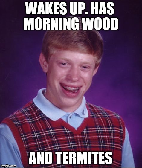 Mondays are his worst days | WAKES UP. HAS MORNING WOOD AND TERMITES | image tagged in memes,bad luck brian,mondays | made w/ Imgflip meme maker
