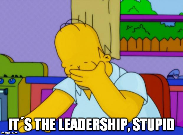 Homer Simpson | IT´S THE LEADERSHIP, STUPID | image tagged in homer simpson | made w/ Imgflip meme maker