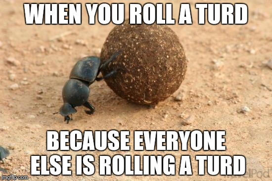 Lack of autonomy | WHEN YOU ROLL A TURD BECAUSE EVERYONE ELSE IS ROLLING A TURD | image tagged in hard working dung beetle,followers,memes | made w/ Imgflip meme maker