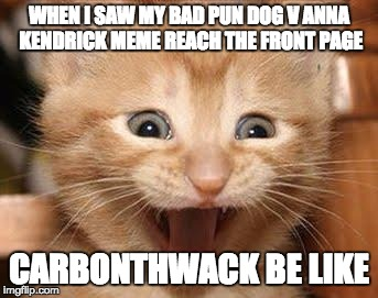 First Time!!! | WHEN I SAW MY BAD PUN DOG V ANNA KENDRICK MEME REACH THE FRONT PAGE CARBONTHWACK BE LIKE | image tagged in memes,excited cat | made w/ Imgflip meme maker