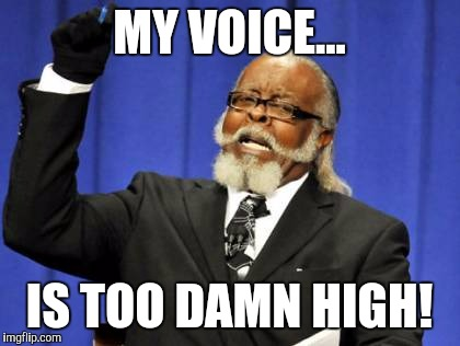 Too Damn High Meme | MY VOICE... IS TOO DAMN HIGH! | image tagged in memes,too damn high | made w/ Imgflip meme maker
