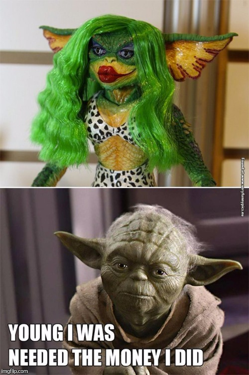 Funny Yoda | CHEVY | image tagged in funny yoda | made w/ Imgflip meme maker
