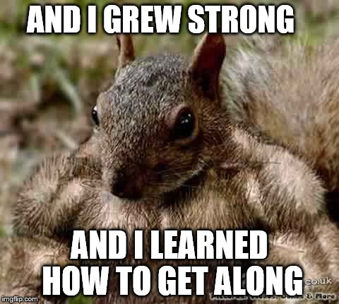 AND I GREW STRONG AND I LEARNED HOW TO GET ALONG | made w/ Imgflip meme maker
