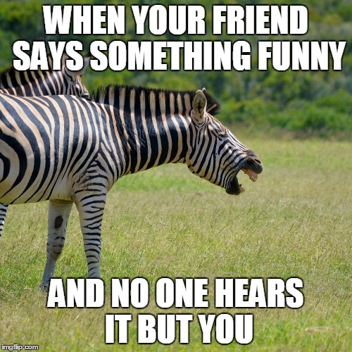 WHEN YOUR FRIEND SAYS SOMETHING FUNNY AND NO ONE HEARS IT BUT YOU | image tagged in awkward moment,that awkward moment | made w/ Imgflip meme maker