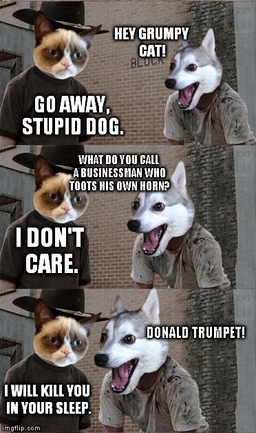 Introducing a new bad pun template: Bad Pun Dog and Grumpy Cat! I can change Bad Pun Dog's face to something else on request. |  HEY GRUMPY CAT! GO AWAY, STUPID DOG. WHAT DO YOU CALL A BUSINESSMAN WHO TOOTS HIS OWN HORN? I DON'T CARE. DONALD TRUMPET! I WILL KILL YOU IN YOUR SLEEP. | image tagged in memes,bpdgc,bad pun dog,grumpy cat | made w/ Imgflip meme maker