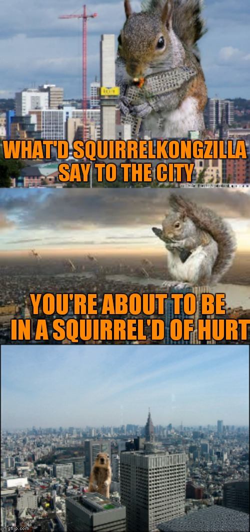 WHAT'D SQUIRRELKONGZILLA SAY TO THE CITY YOU'RE ABOUT TO BE IN A SQUIRREL'D OF HURT | image tagged in bad pun squirrel | made w/ Imgflip meme maker