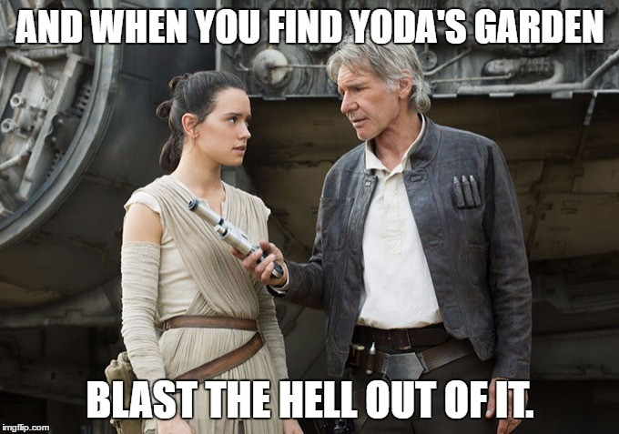 Star Wars-You might need this | AND WHEN YOU FIND YODA'S GARDEN BLAST THE HELL OUT OF IT. | image tagged in star wars-you might need this | made w/ Imgflip meme maker