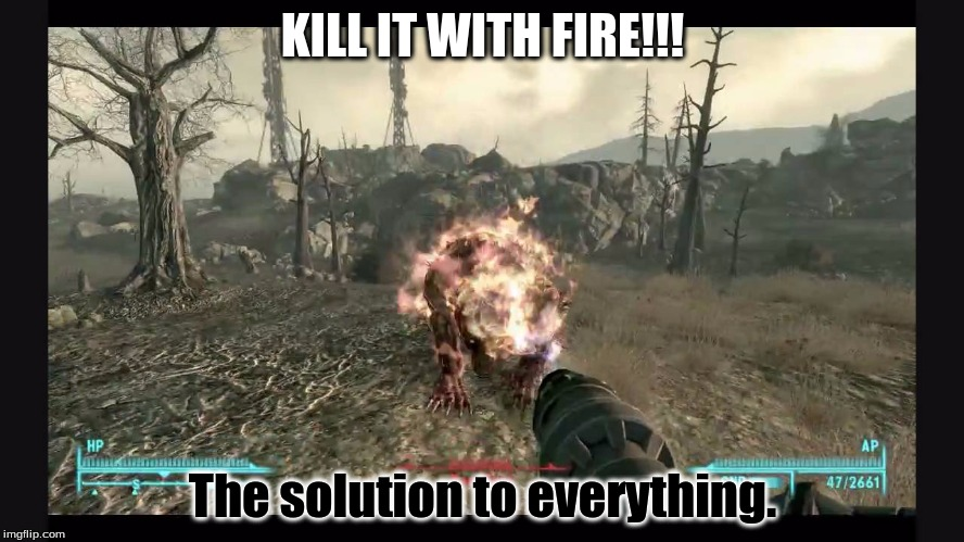 The Solution to all of life's problems, Fallout style. | KILL IT WITH FIRE!!! The solution to everything. | image tagged in the solution,fallout 4,fallout,fallout 3,kill it with fire | made w/ Imgflip meme maker