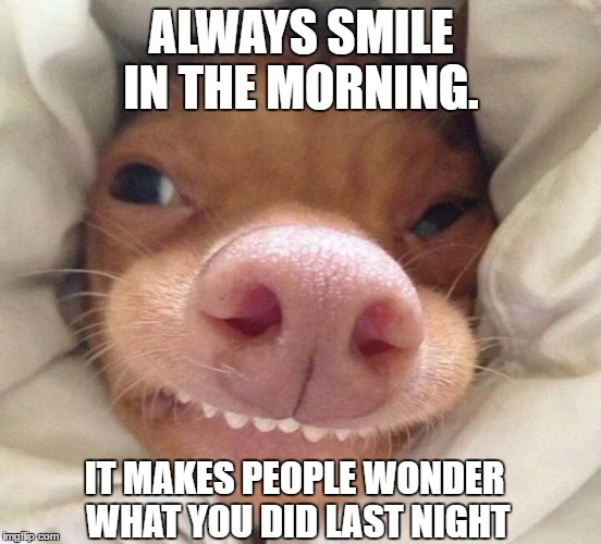 Morning Smile