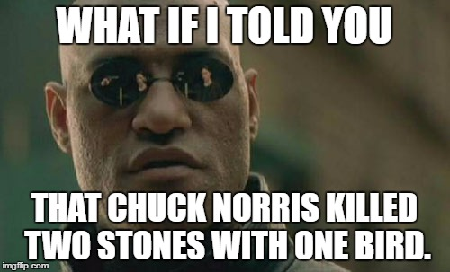 Matrix Morpheus chuck norris | WHAT IF I TOLD YOU THAT CHUCK NORRIS KILLED TWO STONES WITH ONE BIRD. | image tagged in memes,matrix morpheus,chuck norris,funny | made w/ Imgflip meme maker