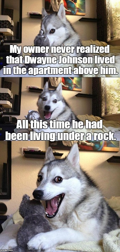 Bad Pun Dog Meme | My owner never realized that Dwayne Johnson lived in the apartment above him. All this time he had been living under a rock. | image tagged in memes,bad pun dog | made w/ Imgflip meme maker