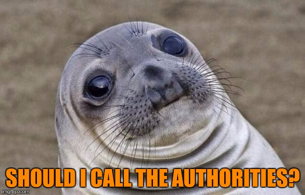 Awkward Moment Sealion Meme | SHOULD I CALL THE AUTHORITIES? | image tagged in memes,awkward moment sealion | made w/ Imgflip meme maker