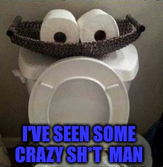 You Think Your Job Stinks? Try Mine!  | I'VE SEEN SOME CRAZY SH*T  MAN | image tagged in toilet humor,lol,memes | made w/ Imgflip meme maker