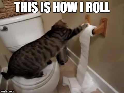 THIS IS HOW I ROLL | made w/ Imgflip meme maker