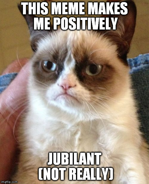 Grumpy Cat Meme | THIS MEME MAKES ME POSITIVELY JUBILANT (NOT REALLY) | image tagged in memes,grumpy cat | made w/ Imgflip meme maker