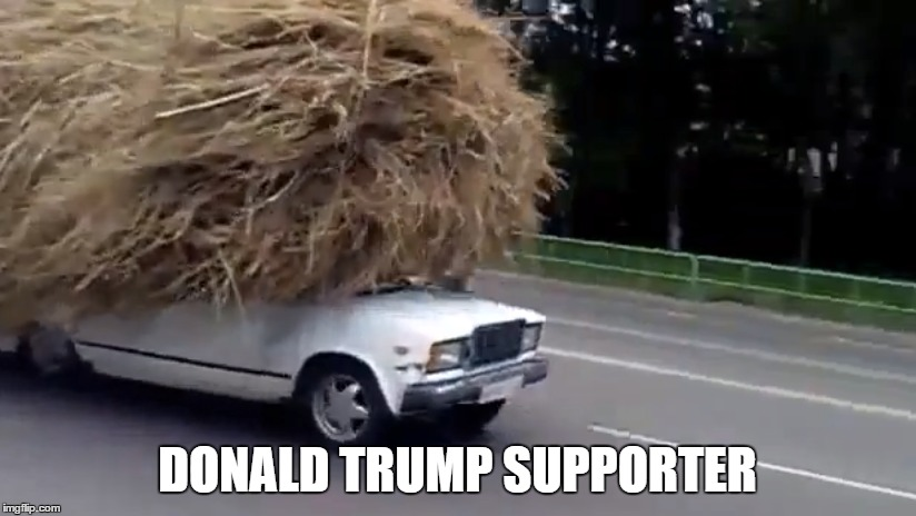 Donald Trump supporter |  DONALD TRUMP SUPPORTER | image tagged in donald trump,president 2016,presidential race,trump 2016,donald trumph hair | made w/ Imgflip meme maker