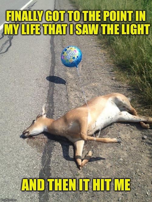 Check Out The Balloon... | FINALLY GOT TO THE POINT IN MY LIFE THAT I SAW THE LIGHT AND THEN IT HIT ME | image tagged in deer caught in headlights,see the light,memes,funny | made w/ Imgflip meme maker