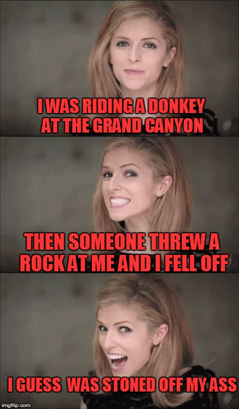Falling off the Donkey | I WAS RIDING A DONKEY AT THE GRAND CANYON THEN SOMEONE THREW A ROCK AT ME AND I FELL OFF I GUESS  WAS STONED OFF MY ASS | image tagged in memes,bad pun anna kendrick | made w/ Imgflip meme maker