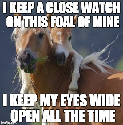 Foal Of Mine | I KEEP A CLOSE WATCH ON THIS FOAL OF MINE I KEEP MY EYES WIDE OPEN ALL THE TIME | image tagged in memes,foal of mine | made w/ Imgflip meme maker