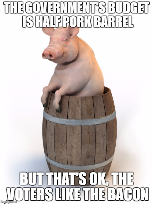 Pork-barrel | THE GOVERNMENT'S BUDGET IS HALF PORK BARREL BUT THAT'S OK, THE VOTERS LIKE THE BACON | image tagged in budget report,spending,funny memes | made w/ Imgflip meme maker