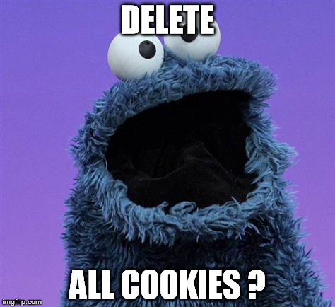 cookie monster |  DELETE; ALL COOKIES ? | image tagged in cookie monster | made w/ Imgflip meme maker
