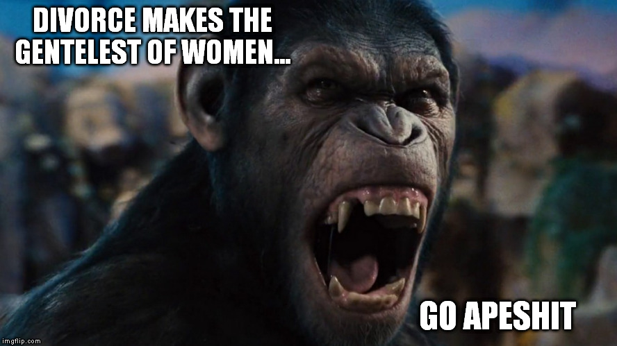 DIVORCE MAKES THE GENTELEST OF WOMEN... GO APESHIT | made w/ Imgflip meme maker