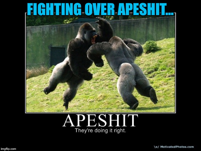 FIGHTING OVER APESHIT... | made w/ Imgflip meme maker