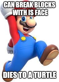 mario | CAN BREAK BLOCKS WITH IS FACE DIES TO A TURTLE | image tagged in mario | made w/ Imgflip meme maker