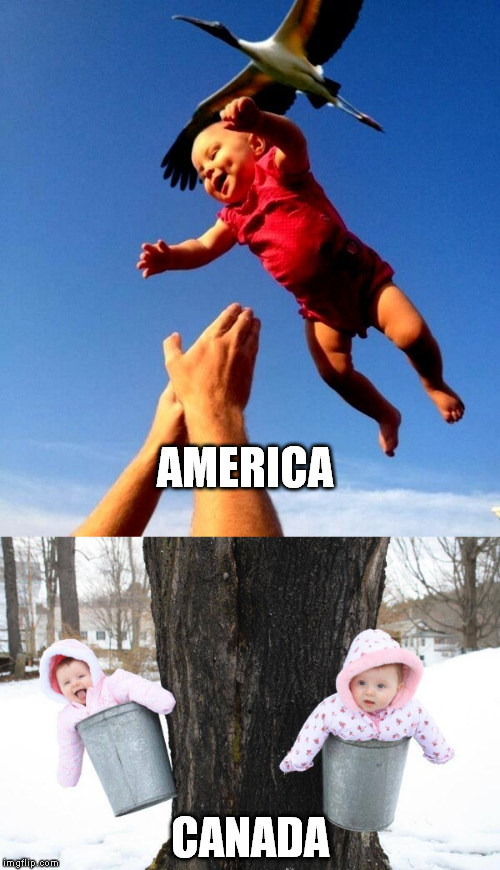 Where Do Babies Come From? | AMERICA CANADA | image tagged in baby,babies,stork,america,canada,born | made w/ Imgflip meme maker