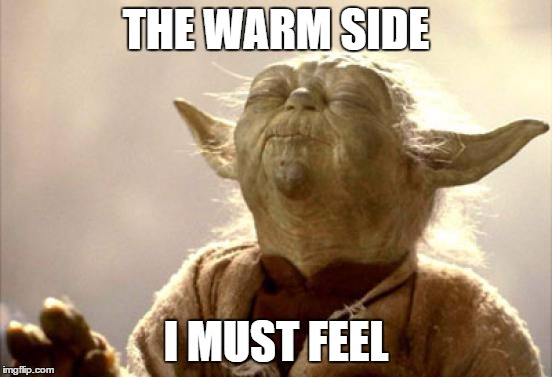 THE WARM SIDE I MUST FEEL | image tagged in memes,funny,yoda | made w/ Imgflip meme maker