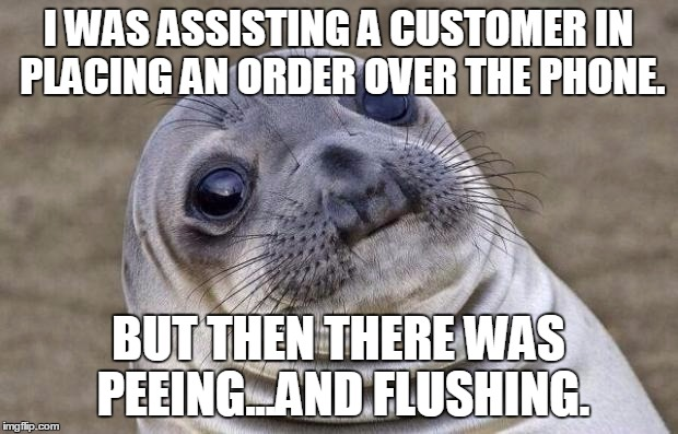 Awkward Moment Sealion Meme | I WAS ASSISTING A CUSTOMER IN PLACING AN ORDER OVER THE PHONE. BUT THEN THERE WAS PEEING...AND FLUSHING. | image tagged in memes,awkward moment sealion,AdviceAnimals | made w/ Imgflip meme maker