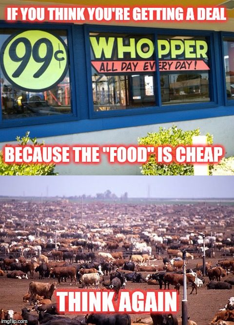 "Fast food comes at a high price. | IF YOU THINK YOU'RE GETTING A DEAL THINK AGAIN BECAUSE THE ""FOOD"" IS CHEAP 