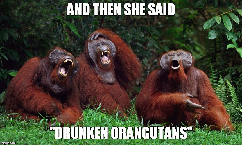 "AND THEN SHE SAID ""DRUNKEN ORANGUTANS"" 