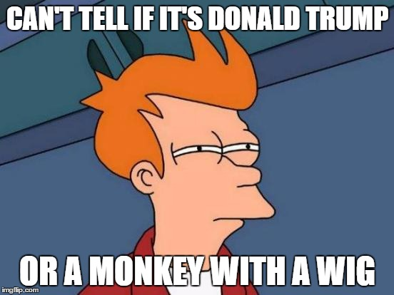 Donald Trump is that ugly | CAN'T TELL IF IT'S DONALD TRUMP OR A MONKEY WITH A WIG | image tagged in memes,futurama fry,monkey,donald trump,wig | made w/ Imgflip meme maker