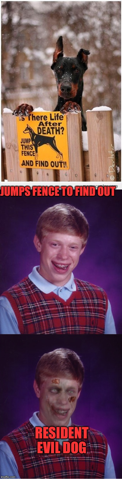 Eternally Bad Luck Brian  | JUMPS FENCE TO FIND OUT RESIDENT EVIL DOG | image tagged in bad luck brian,resident evil,lol,memes | made w/ Imgflip meme maker