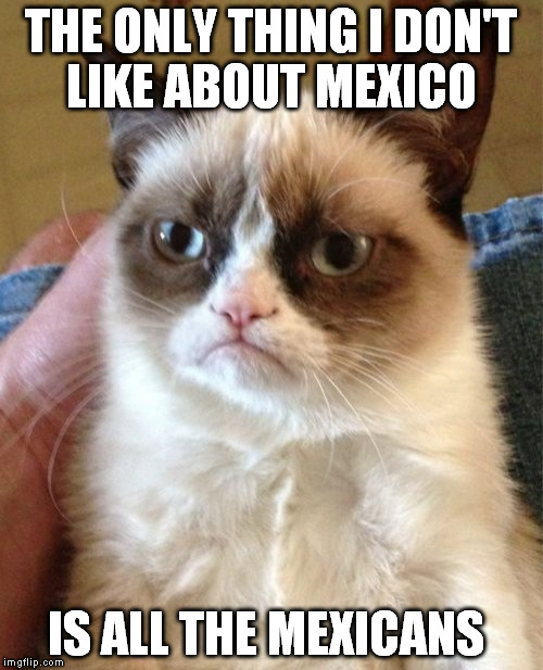 Grumpy Cat Meme | THE ONLY THING I DON'T LIKE ABOUT MEXICO IS ALL THE MEXICANS | image tagged in memes,grumpy cat | made w/ Imgflip meme maker
