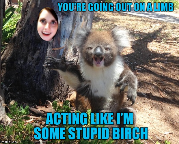 YOU'RE GOING OUT ON A LIMB ACTING LIKE I'M SOME STUPID BIRCH | made w/ Imgflip meme maker